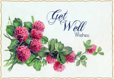 Rest, heal and be comforted, knowing that you are loved. Get Well Blessings!